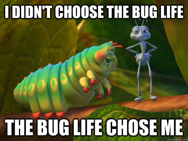 Analyzing Bugzilla Testcases with Bugmon - Mozilla Hacks - the Web developer blog